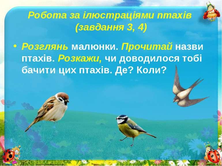 Робота за ілюстраціями птахів (завдання 3, 4)Розглянь малюнки. Прочитай назви...