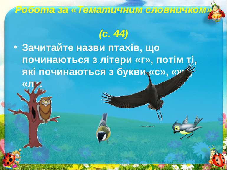 Робота за «Тематичним словничком» (с. 44)Зачитайте назви птахів, що починають...
