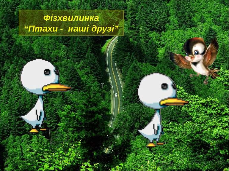 """Фізхвилинка""""Птахи - наші друзі"""""""