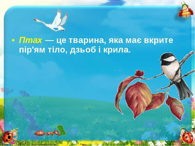 Птах — це тварина, яка має вкрите пір'ям тіло, дзьоб і крила.Птах — це тварин...