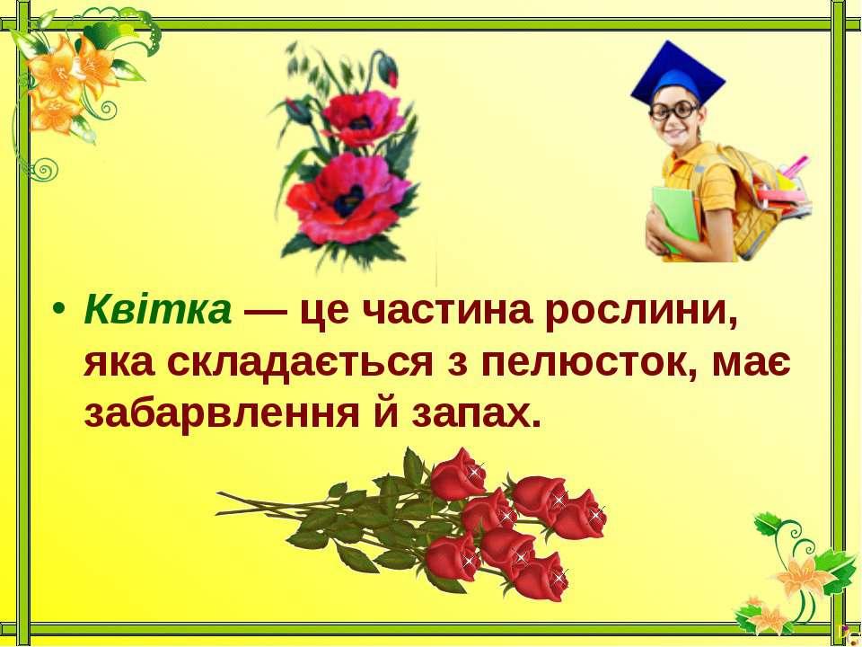 Квітка — це частина рослини, яка складається з пелюсток, має забарвлення й за...