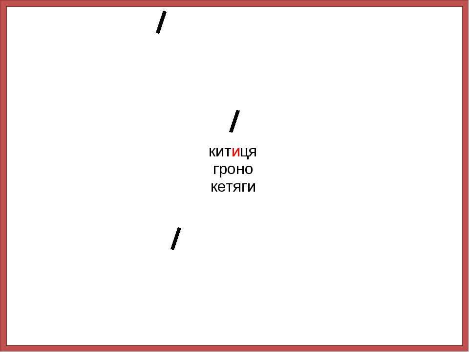 китиця гроно кетяги
