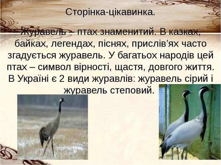 Сторінка-цікавинка. Журавель – птах знаменитий. В казках, байках, легендах, п...