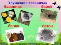Тлумачний словничок бавовник багаж барліг бетон