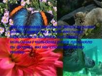 Дві третини поверхні Землі вкриває вода. Саме у ній в ході еволюції зародилос...