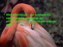 Мікроеволюція – це сукупність еволюційних процесів, які відбуваються в популя...