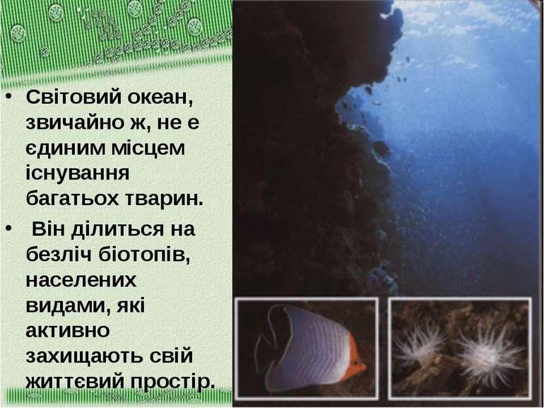 Світовий океан, звичайно ж, не е єдиним місцем існування багатьох тварин. Він...