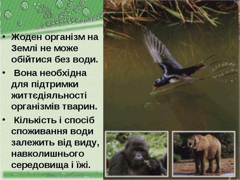 Жоден організм на Землі не може обійтися без води. Вона необхідна для підтрим...