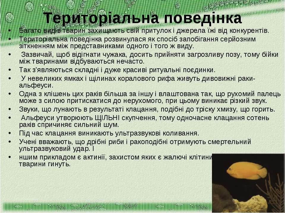 Територіальна поведінка Багато видів тварин захищають свій притулок і джерела...