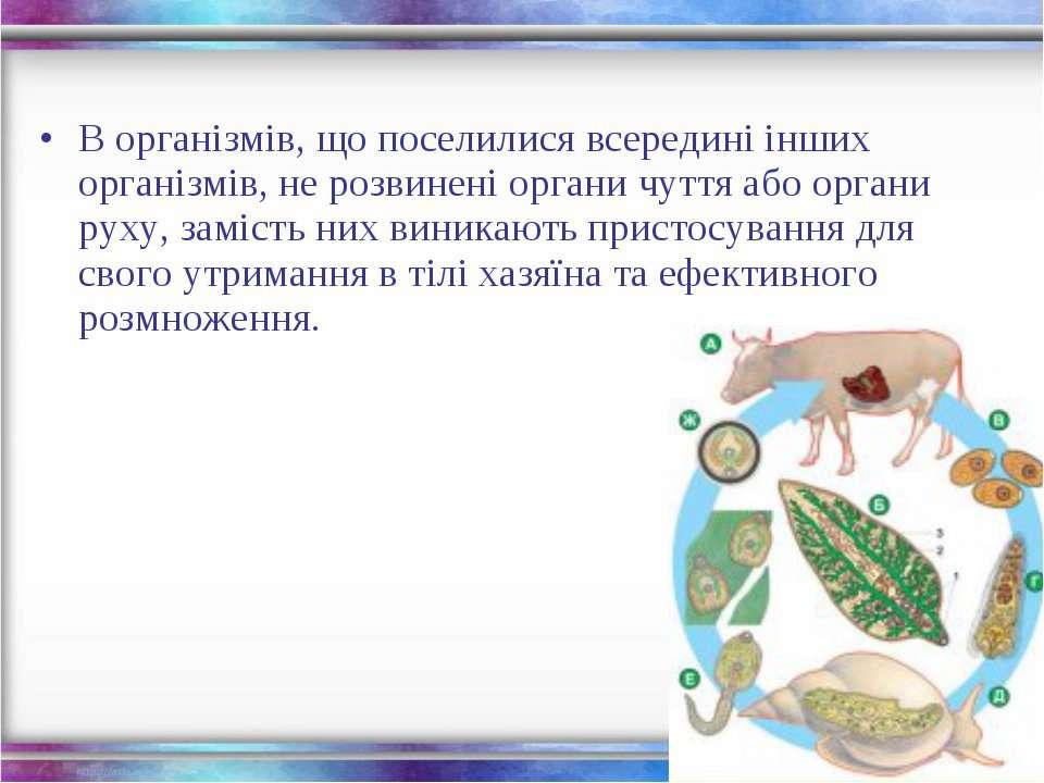 В організмів, що поселилися всередині інших організмів, не розвинені органи ч...