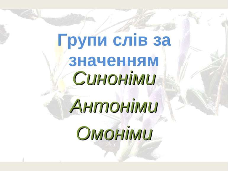 Групи слів за значенням Синоніми Антоніми Омоніми