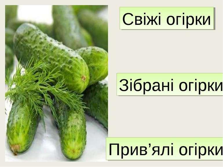 Свіжі огірки Зібрані огірки Прив'ялі огірки