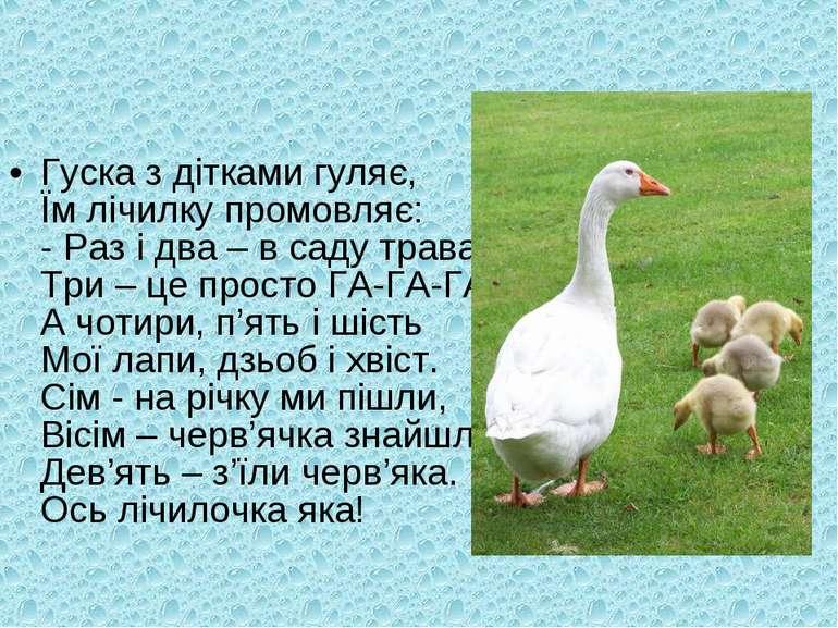 Гуска з дітками гуляє, Їм лічилку промовляє: - Раз і два – в саду трава, Три ...