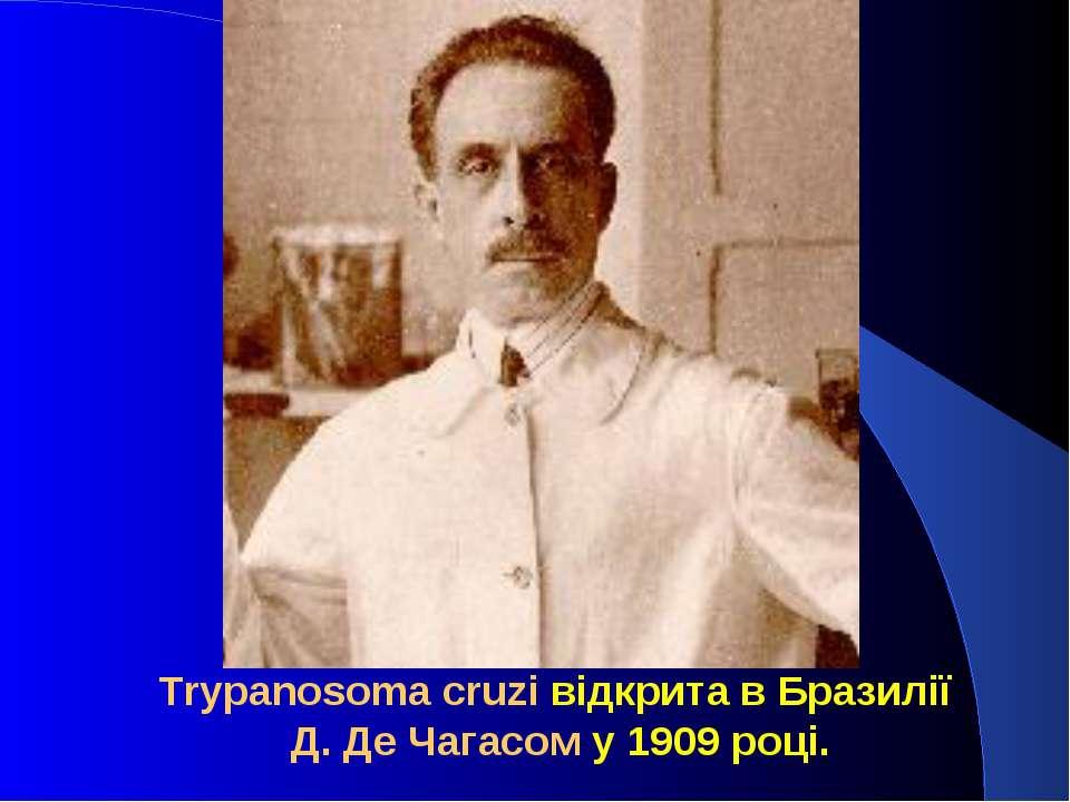 Trypanosoma cruzi відкрита в Бразилії Д. Де Чагасом у 1909 році.