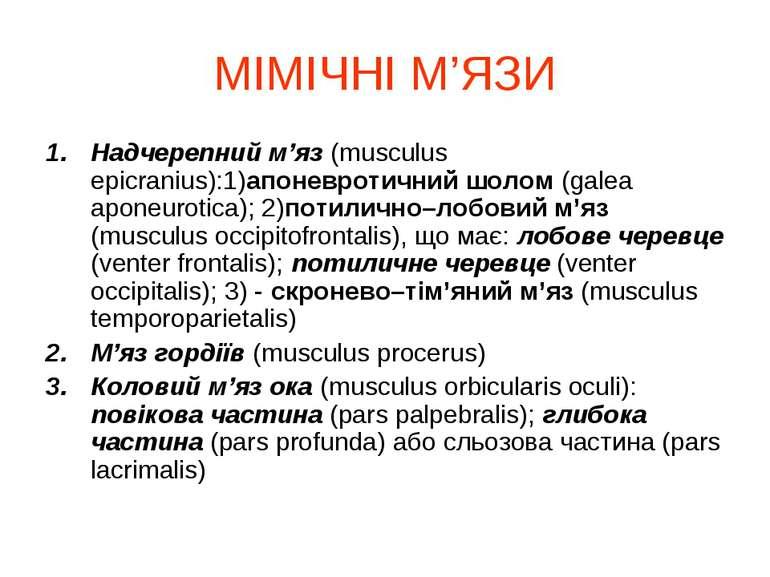 МІМІЧНІ М'ЯЗИ Надчерепний м'яз (musculus epicranius):1)апоневротичний шолом (...