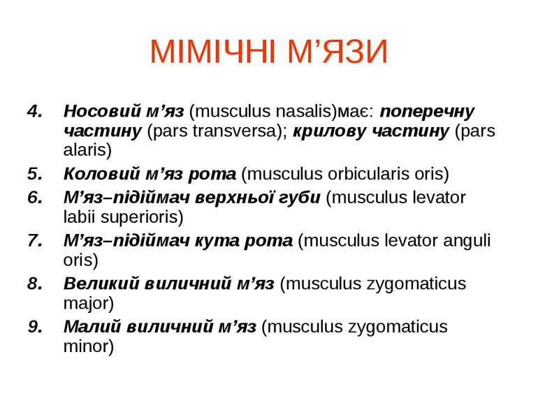 МІМІЧНІ М'ЯЗИ Носовий м'яз (musculus nasalis)має: поперечну частину (pars tra...