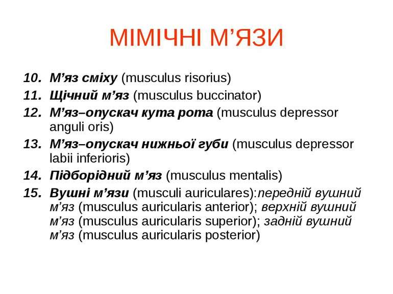 МІМІЧНІ М'ЯЗИ М'яз сміху (musculus risorius) Щічний м'яз (musculus buccinator...