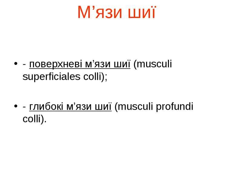 М'язи шиї - поверхневі м'язи шиї (musculi superficiales colli); - глибокі м'я...