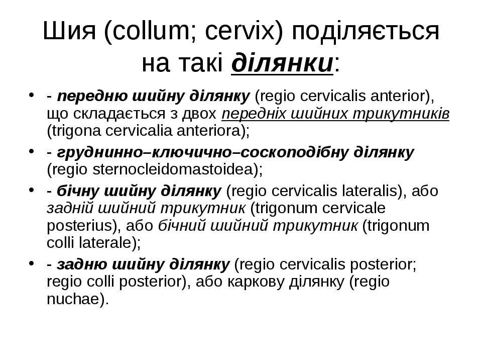 Шия (collum; cervix) поділяється на такі ділянки: - передню шийну ділянку (re...