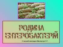 Старший викладач Малярчук Г.Р.