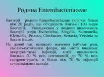 Родина Enterobacteriaceae Бактерії родини Enterobacteriaceae включає більш ні...
