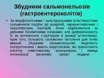 Збудники сальмонельозів (гастроентероколітів) За морфологічними і культуральн...
