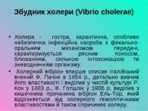 Збудник холери (Vibrio cholerae) Холера - гостра, карантинна, особливо небезп...