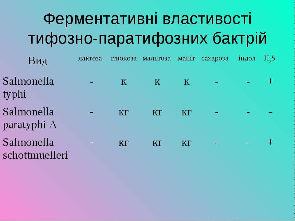 Ферментативні властивості тифозно-паратифозних бактрій