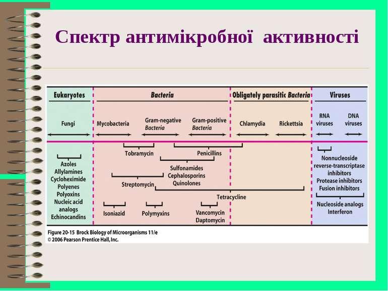 Спектр антимікробної активності