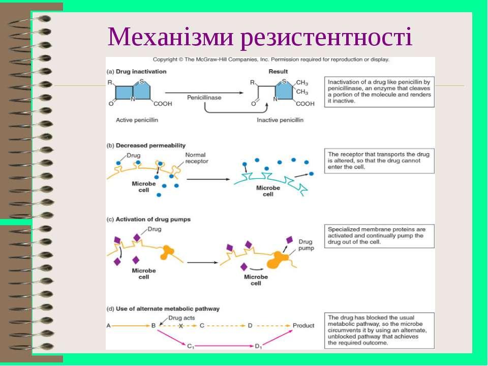 Механізми резистентності