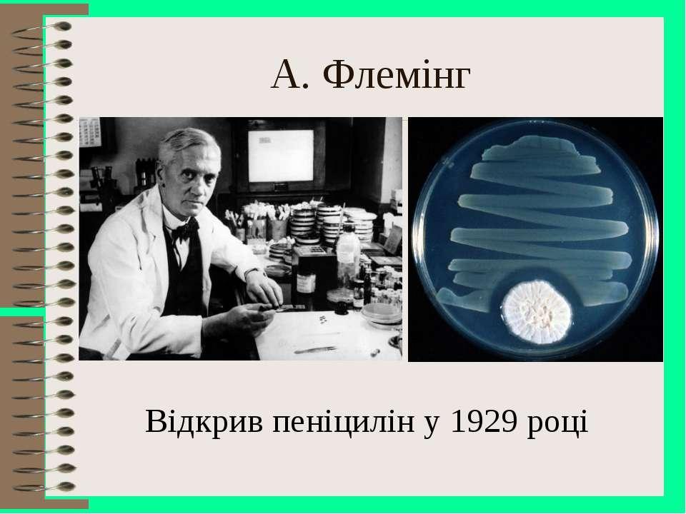 A. Флемінг Відкрив пеніцилін у 1929 році