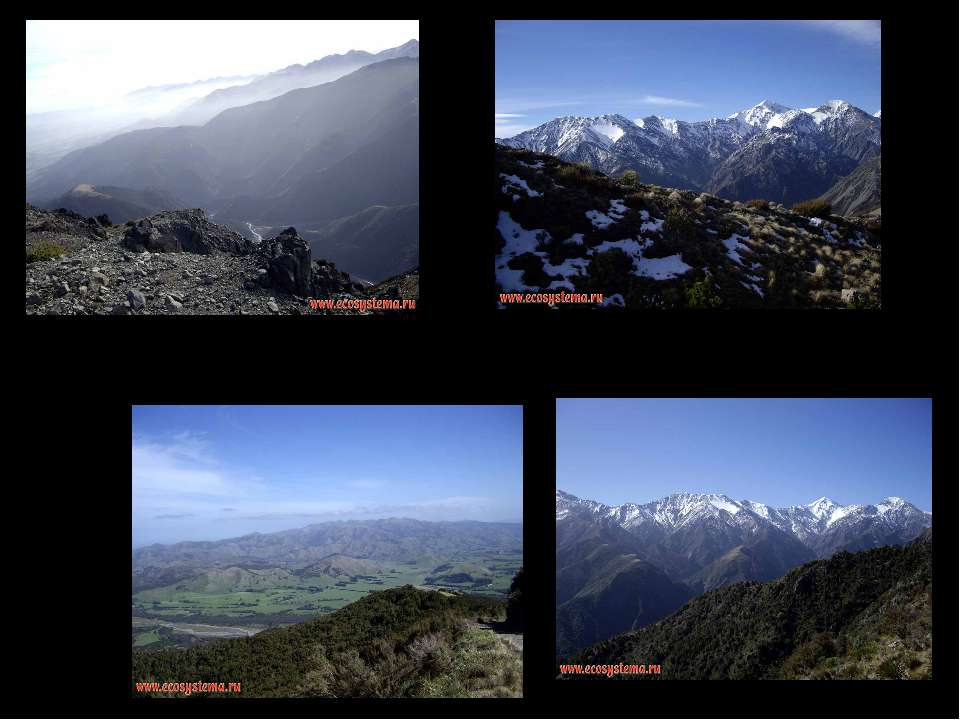 """Гори """"Приморський Кайкур"""" в зоні альпійських лугів (1200-1500 м над рівнем мо..."""