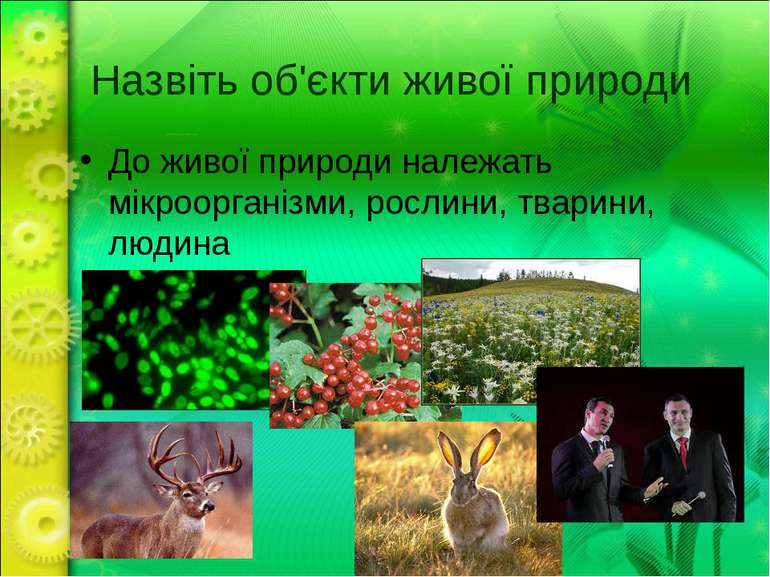 Назвіть об'єкти живої природи До живої природи належать мікроорганізми, росли...