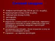 Сечовий синдром помірна протеїнурія (від 100 мг до 3,5 г за добу), еритроциту...