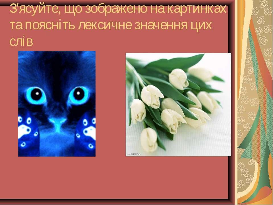 З′ясуйте, що зображено на картинках та поясніть лексичне значення цих слів