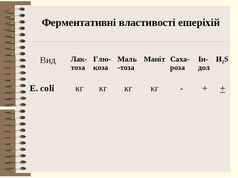 Ферментативні властивості ешеріхій Вид Лак-тоза Глю-коза Маль-тоза Маніт Саха...