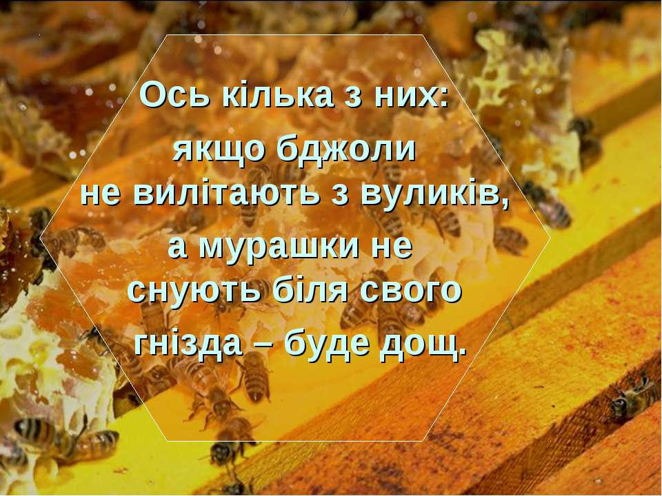 Ось кілька з них: якщо бджоли не вилітають з вуликів, а мурашки не снують біл...