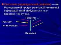 Онтогенез (індивідуальний розвиток) –– це безперервний процес реалізації гене...