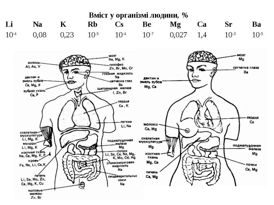 Вміст у організмі людини, % Li Na K Rb Cs Be Mg Ca Sr Ba 10-4 0,08 0,23 10-5 ...