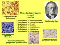 Методи фарбування: прості складні Staphylococcus aureus Escherichia coli Хан ...