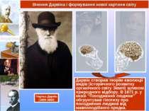 Дарвін створив теорію еволюції видів (історичного розвитку органічного світу ...