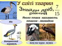 Якого птаха називають птахом - легендою