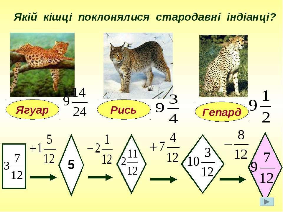 Якій кішці поклонялися стародавні індіанці? Ягуар 5