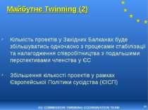* Майбутнє Twinning (2) Кількість проектів у Західних Балканах буде збільшува...