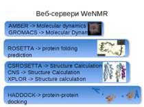 Веб-сервери WeNMR AMBER -> Molecular dynamics GROMACS -> Molecular Dynamics C...