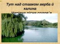 Тут над ставком верба й калина Чарівна пісня солов`я.