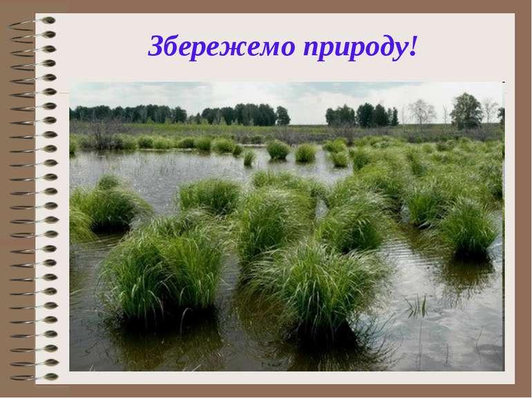 Збережемо природу!