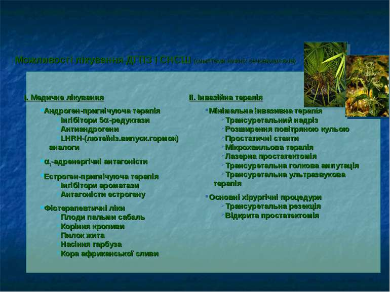 Можливості лікування ДГПЗ і СНСШ (симптоми нижніх сечовихшляхів)