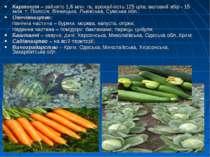 Картопля – зайнято 1,6 млн. га, врожайність 125 ц/га; валовий збір - 15 млн. ...