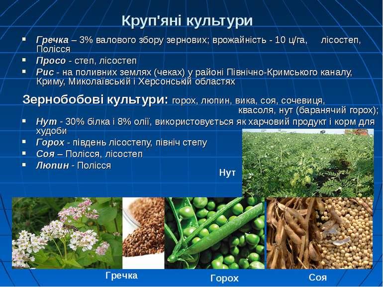 Круп'яні культури Гречка – 3% валового збору зернових; врожайність - 10 ц/га,...